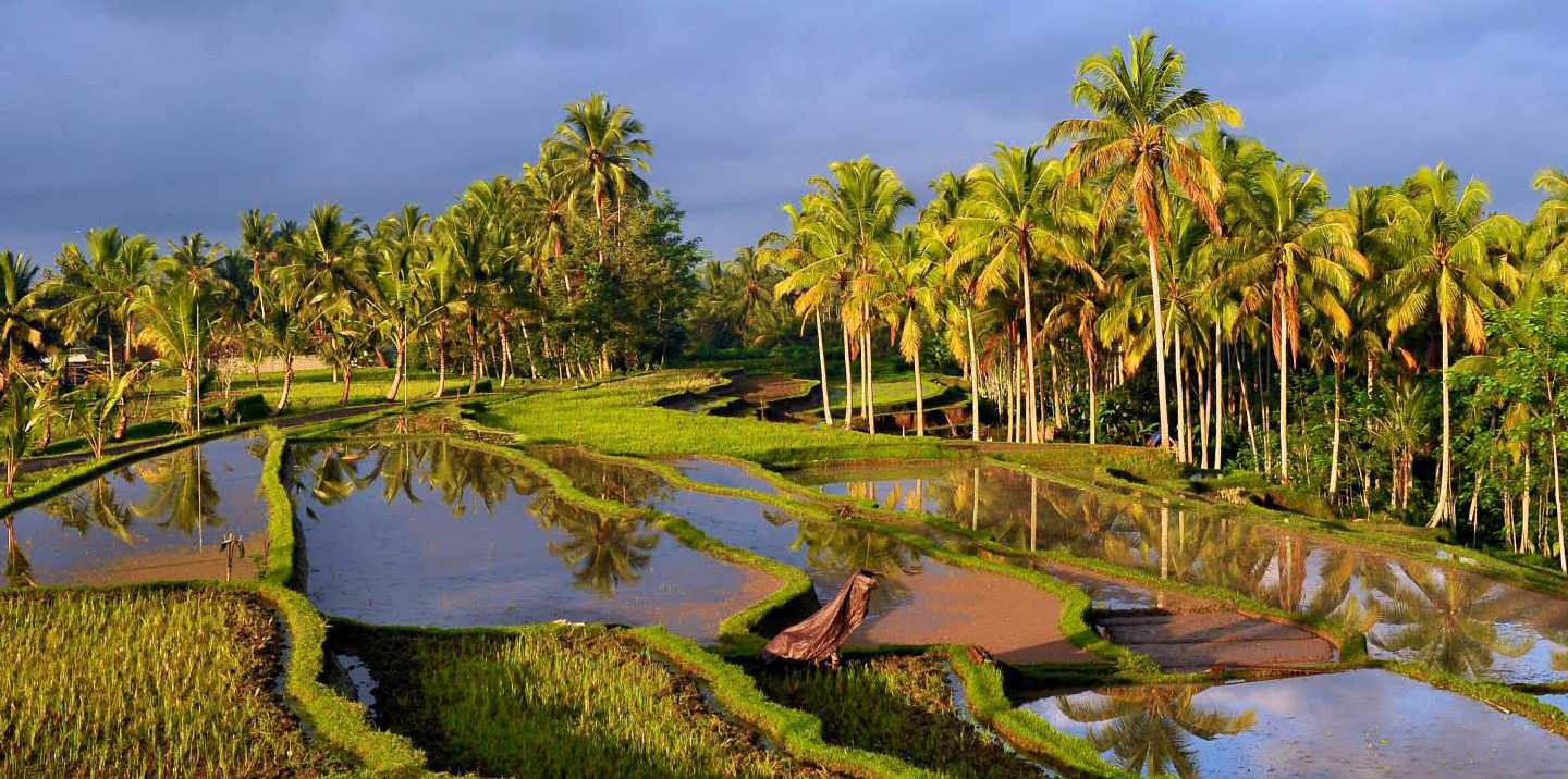 Private Health Package, Bali